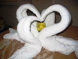 towel swans in the hotel